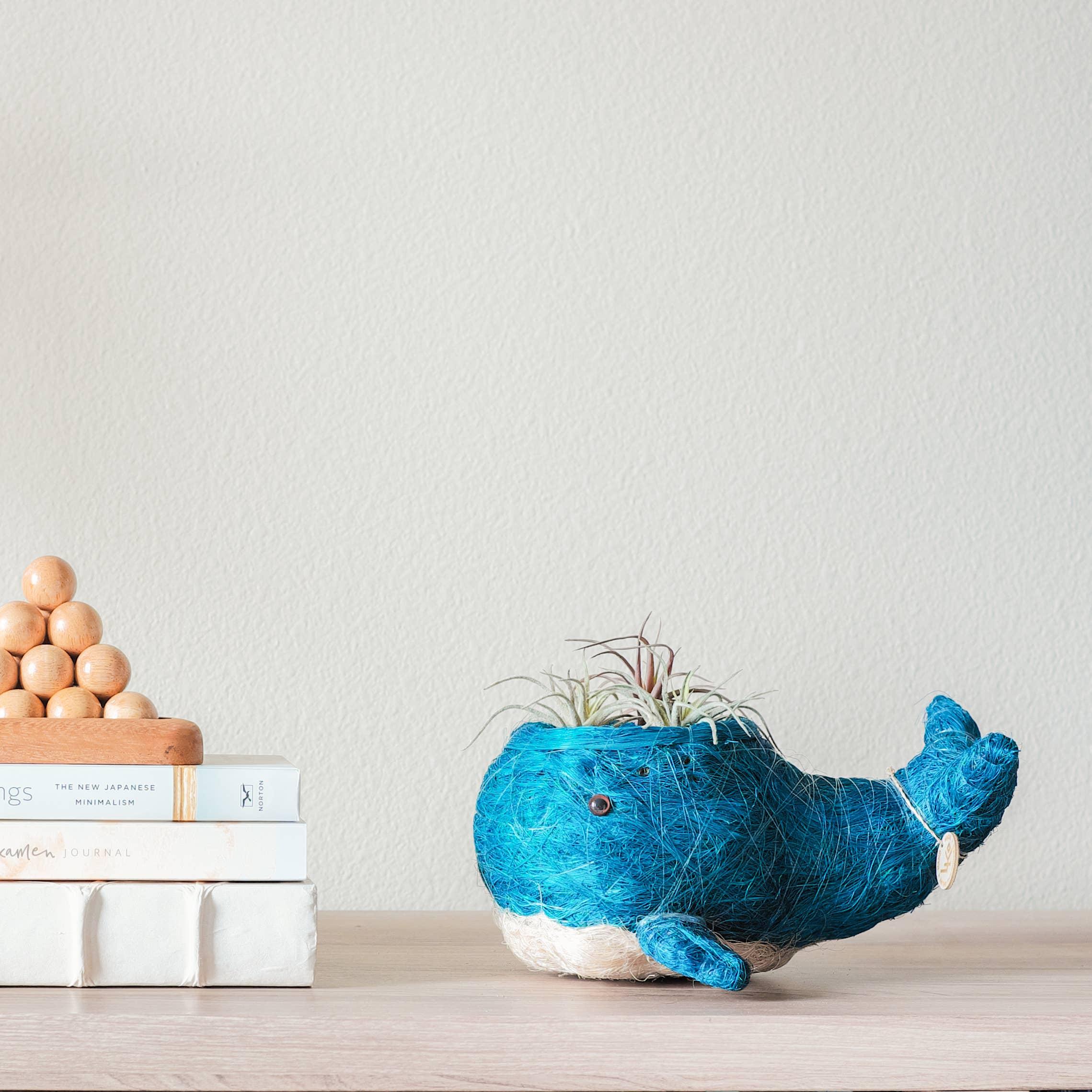 Animal Planter - Baby Whale | Trada Marketplace