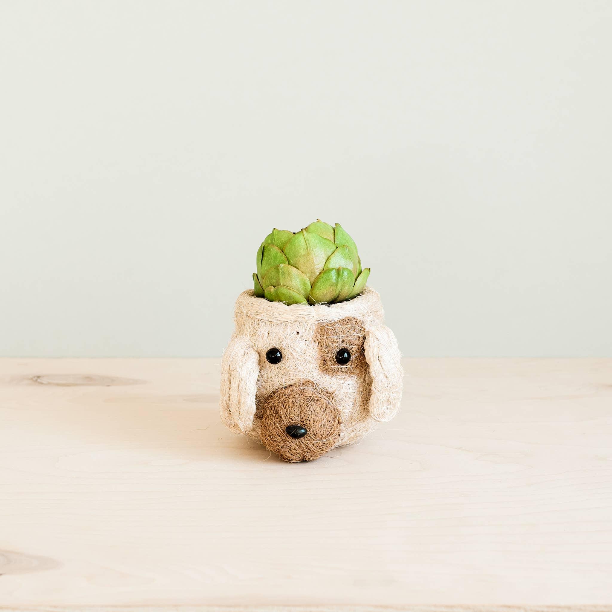 Animal Planter - Mini Pot Dog | Trada Marketplace