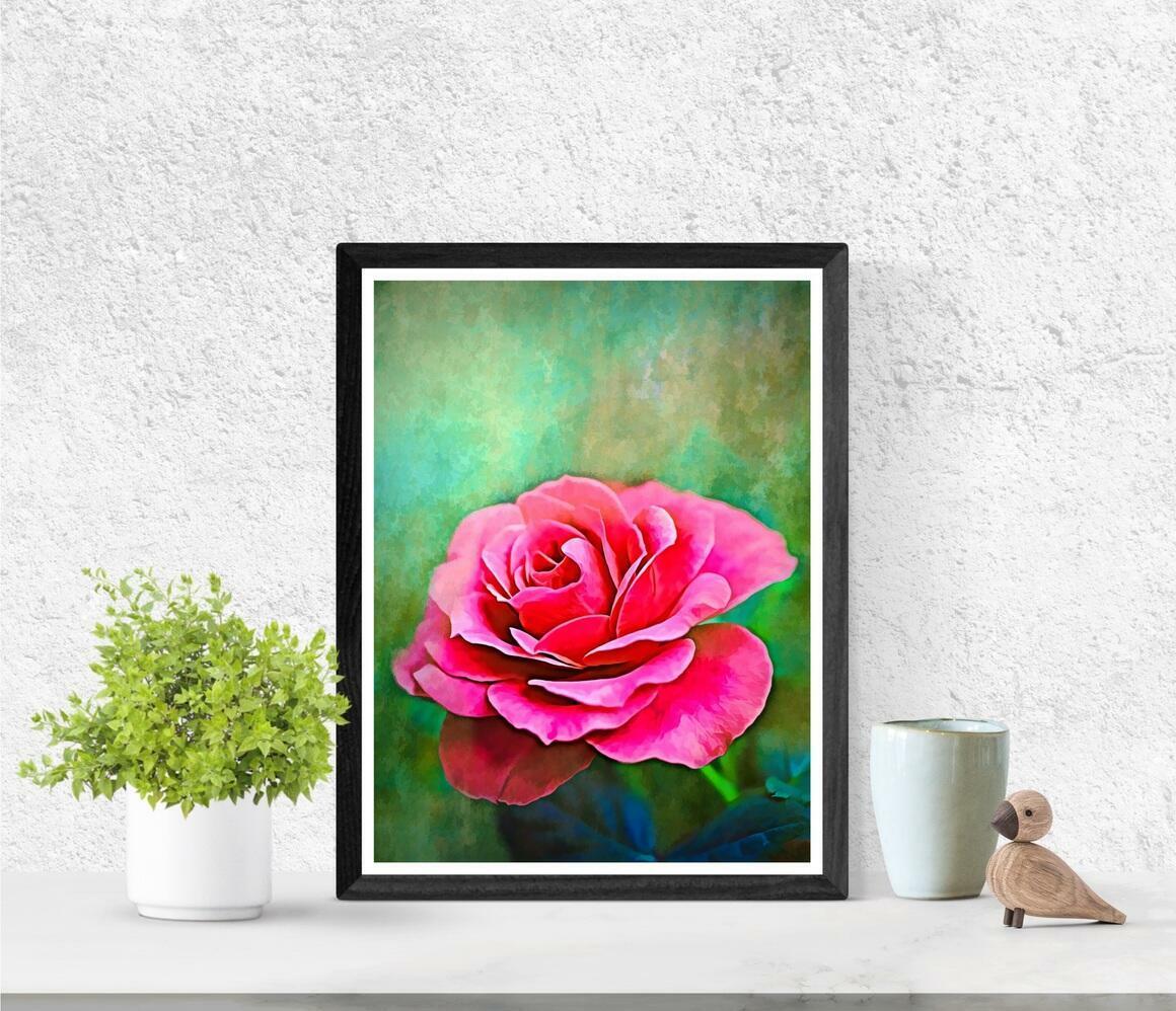 """Exquisite Pink Rose"" Fine Art Print | Trada Marketplace"