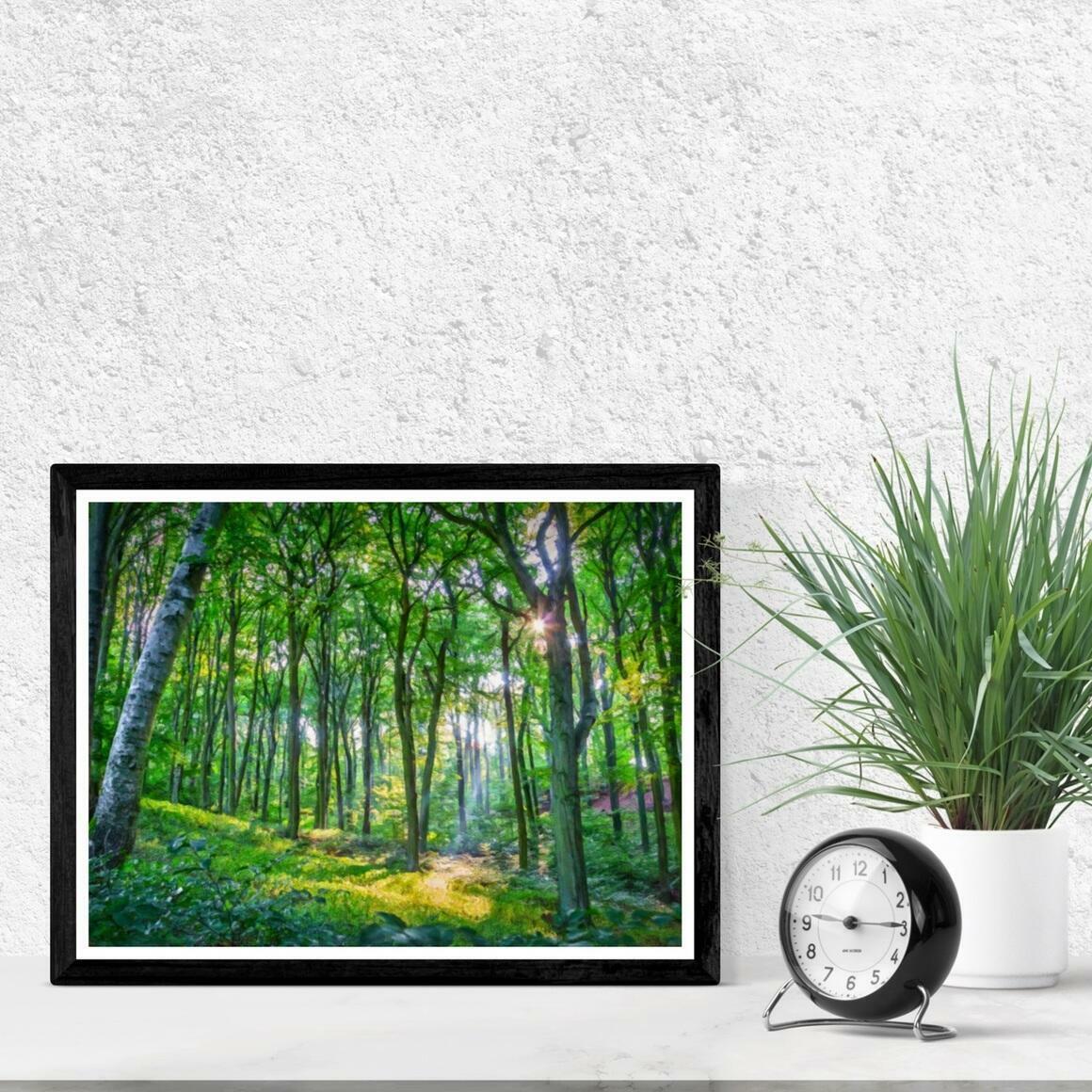 """Emerald Forest"" Fine Art Print | Trada Marketplace"