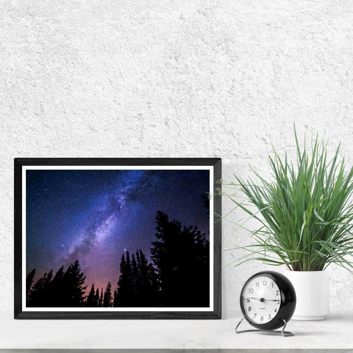 """Conifers Reaching to Milky Way"" Fine Art Print | Trada Marketplace"