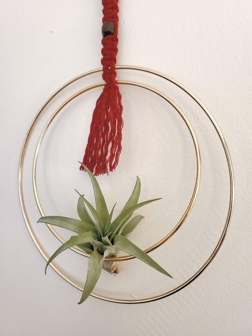Hanging Brass Hoop and Macram Air Plant Display | Trada Marketplace