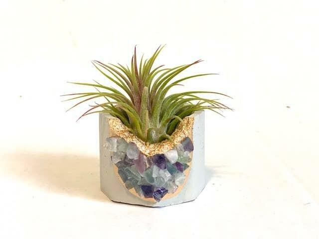 Fluorite Crystal Concrete Planter with Air Plant   Trada Marketplace