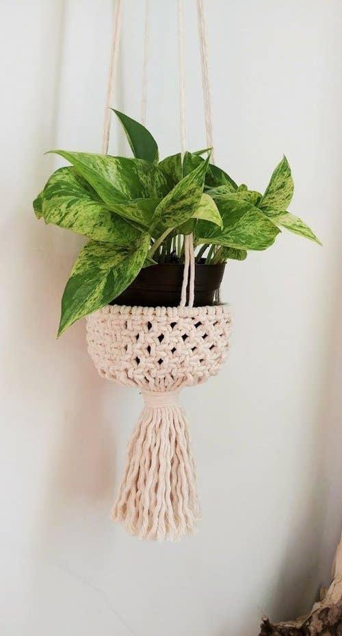 Plant Hanger: Bucket   Trada Marketplace