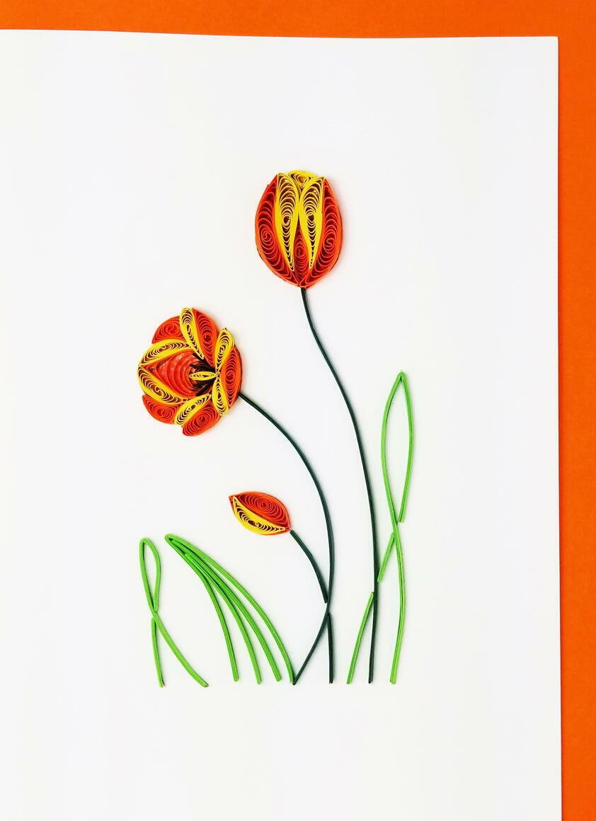 Tulip   Trada Marketplace