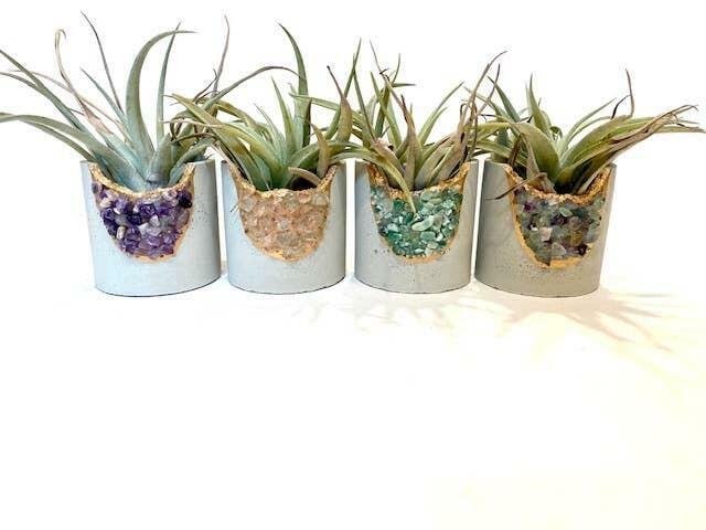 Large Round Geode Planter w/ Air Plant - Mixed Crystal Case   Trada Marketplace
