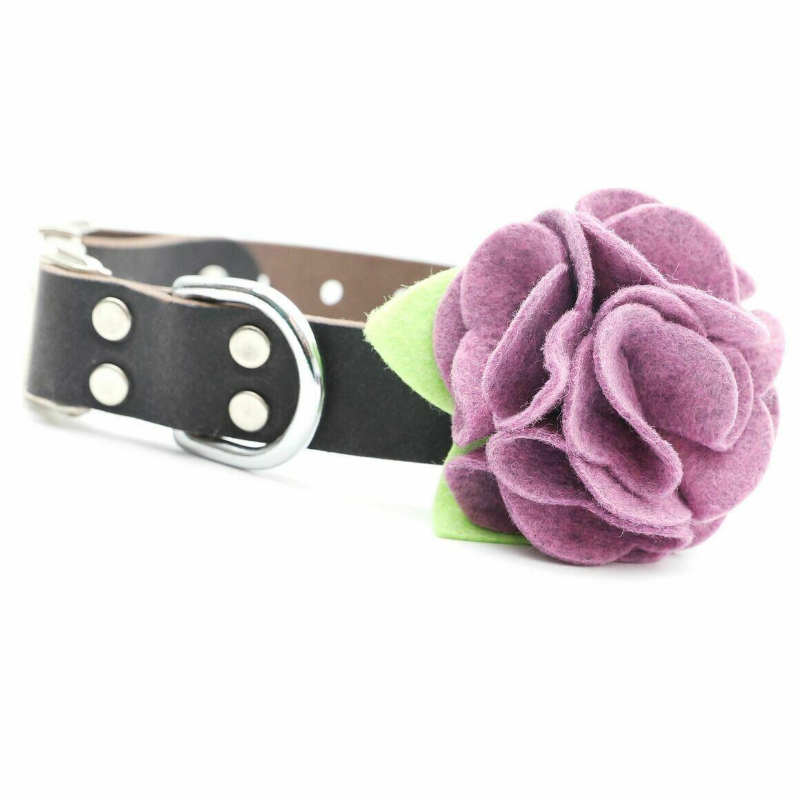 Dog Collar Hydrangea Flower - Hydrangea   Trada Marketplace