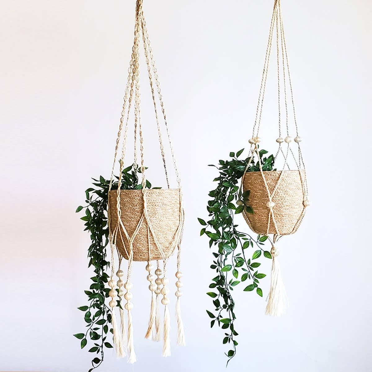 Plant Hanger - Fiora (Set of 2) | Trada Marketplace