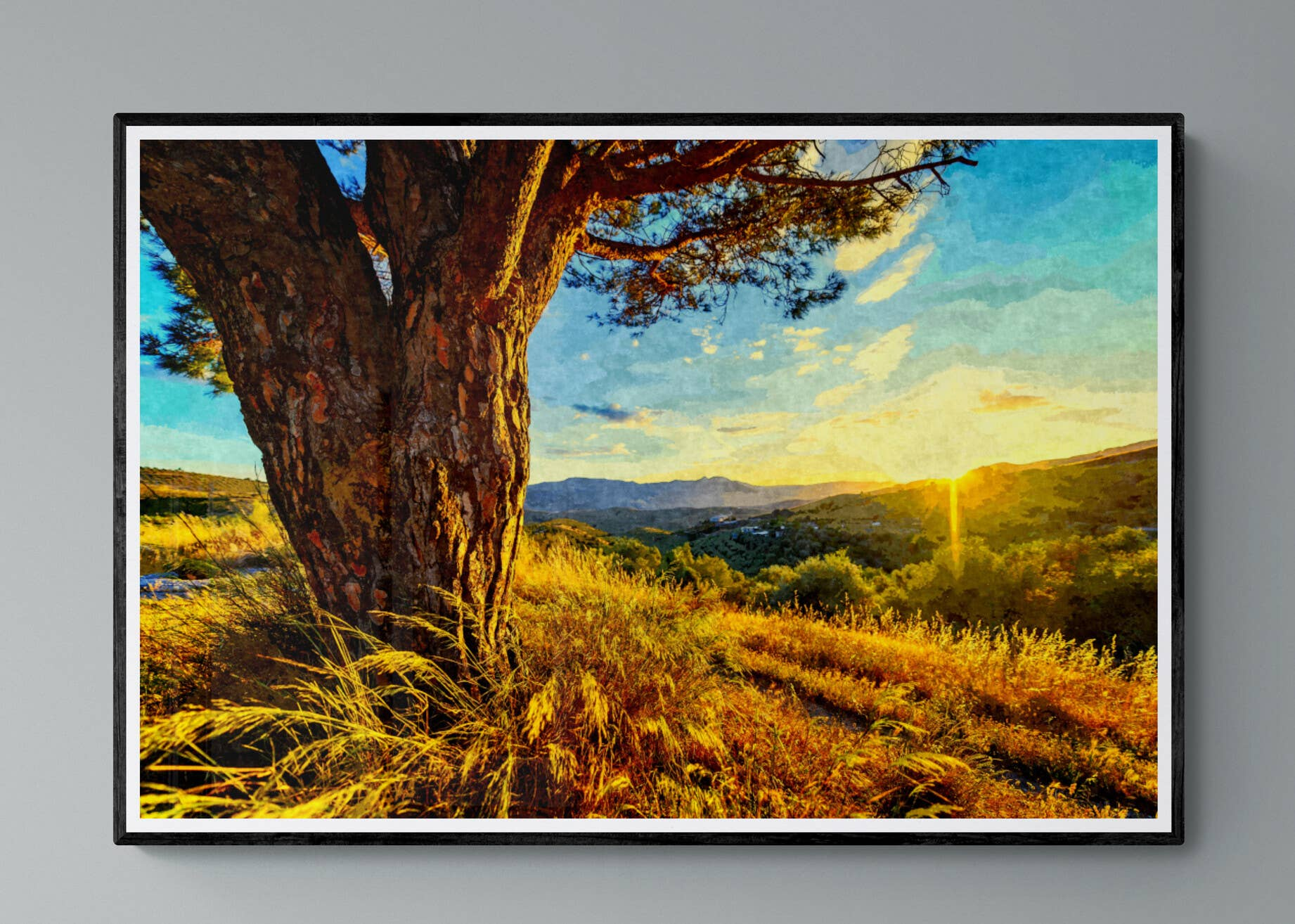 """Gnarled Tree at Sunset"" Fine Art Print | Trada Marketplace"