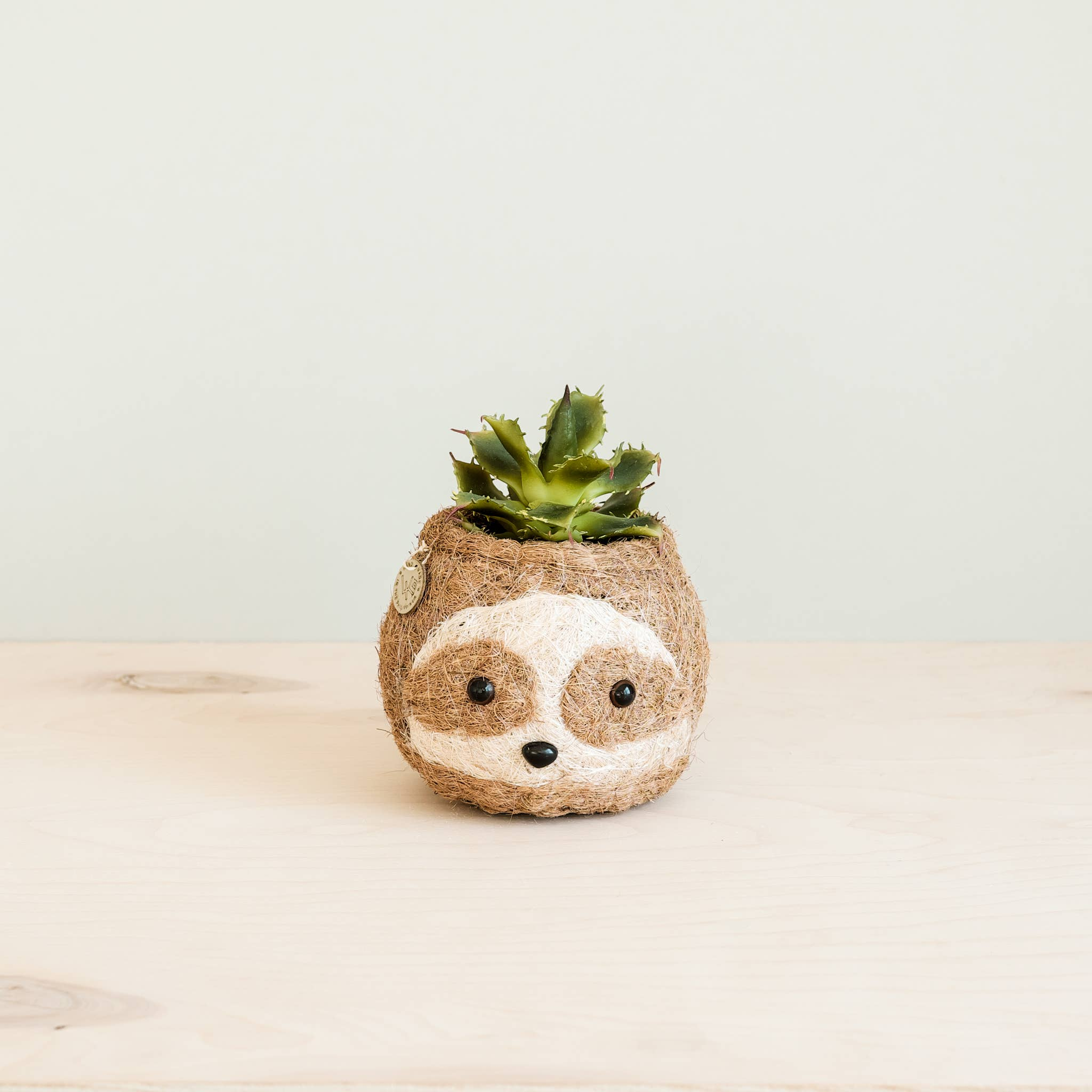 Animal Planter - Mini Pot 2-Color Sloth | Trada Marketplace