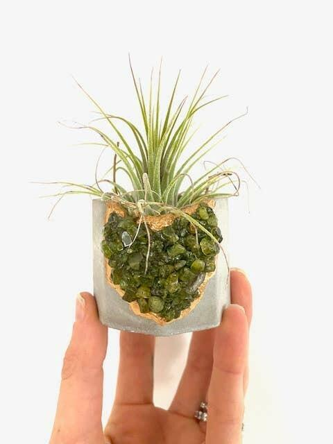 Peridot Crystal Concrete Planter with Air Plant   Trada Marketplace
