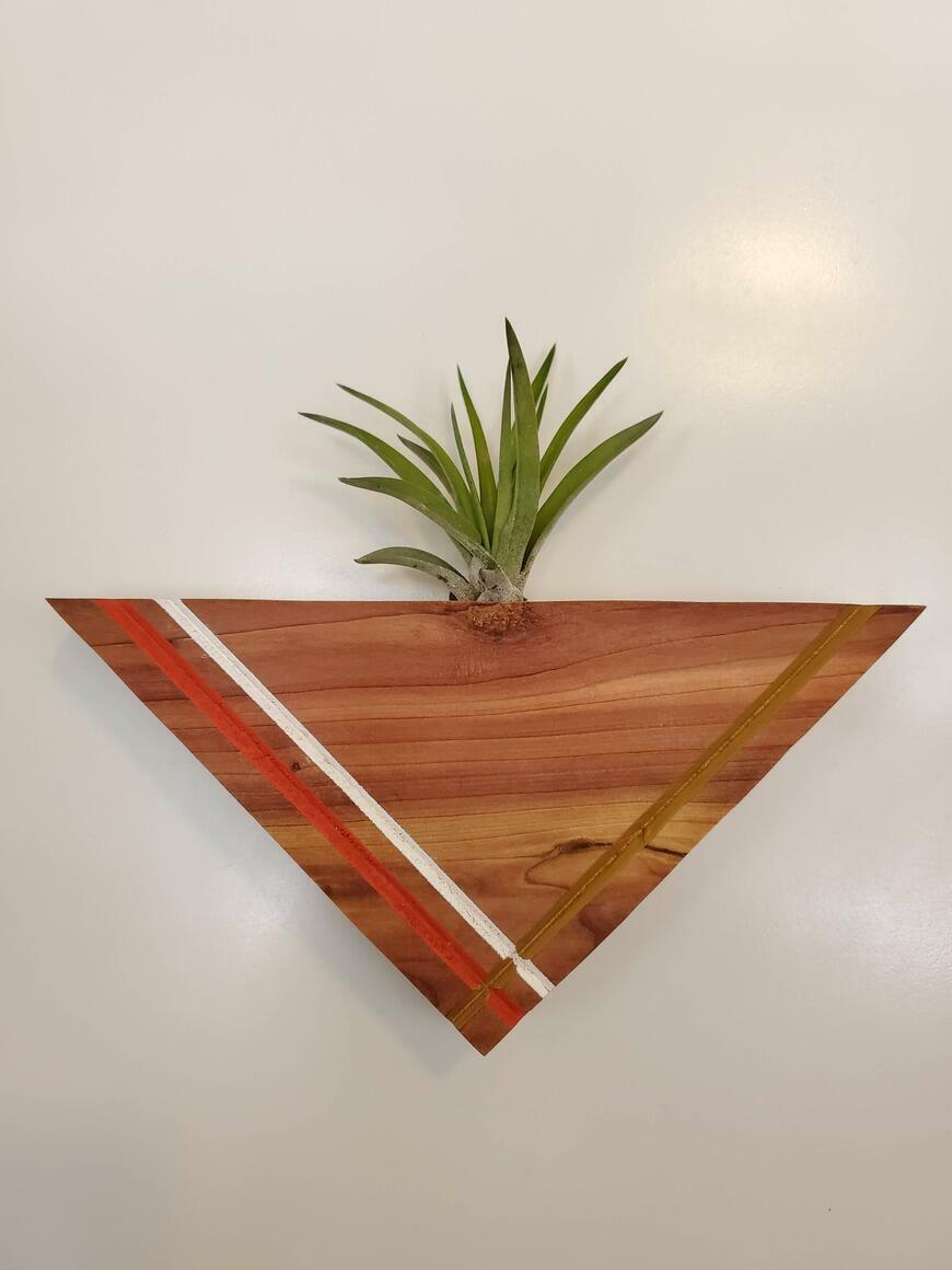 Painted Red Cedar Magnetic Air Plant Display-NO PLANT | Trada Marketplace
