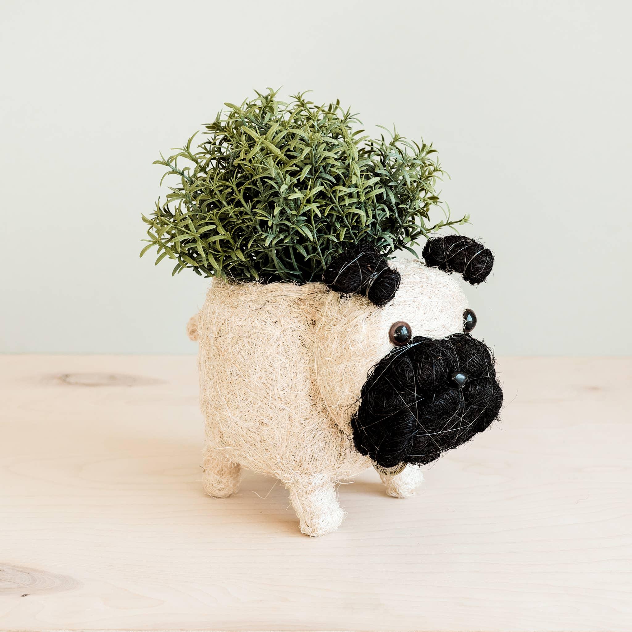 Animal Planter - Pug | Trada Marketplace