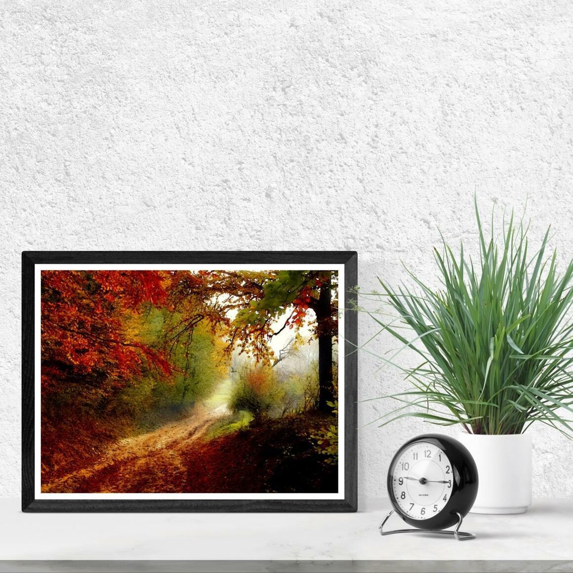 """Autumn Forest Edge"" Fine Art Print | Trada Marketplace"
