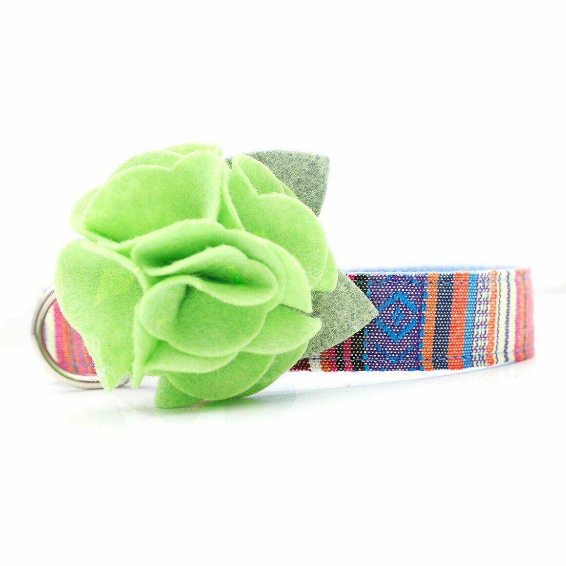 Dog Collar Hydrangea Flower - Chartuse   Trada Marketplace