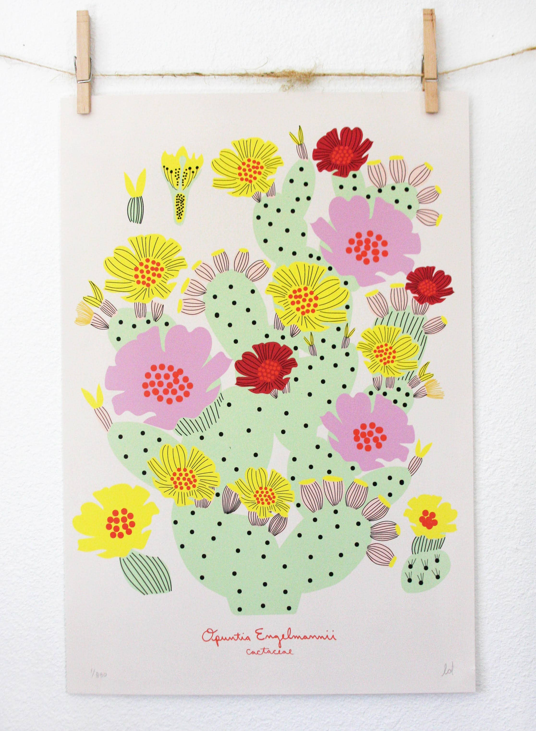 Prickly Pear Poster | Trada Marketplace