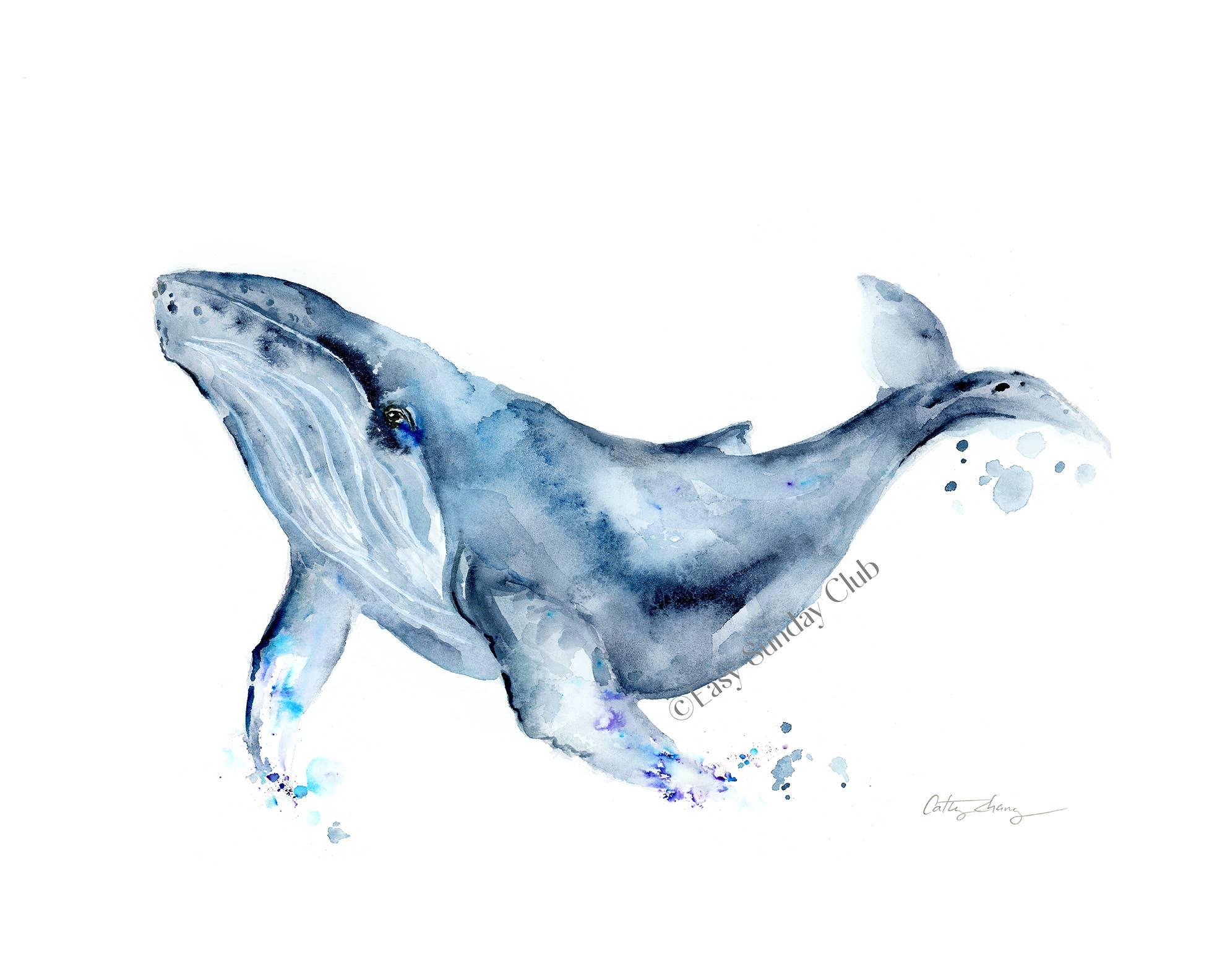 Humpback Whale Art Print | Trada Marketplace