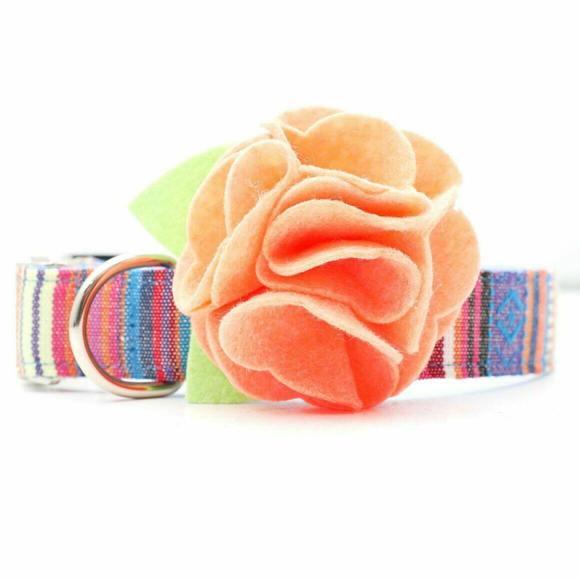 Dog Collar Hydrangea Flower - Georgia Peach   Trada Marketplace