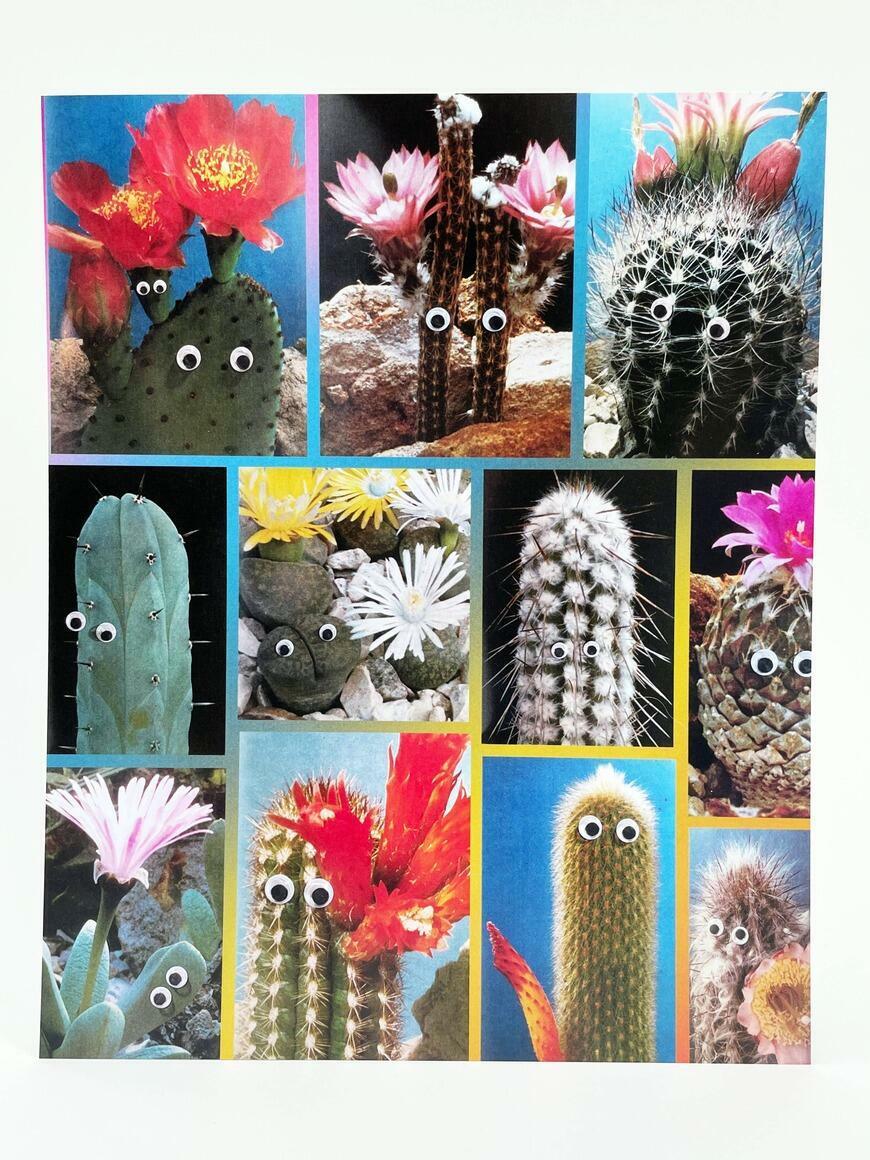 Wild Cacti   Art Print   Trada Marketplace
