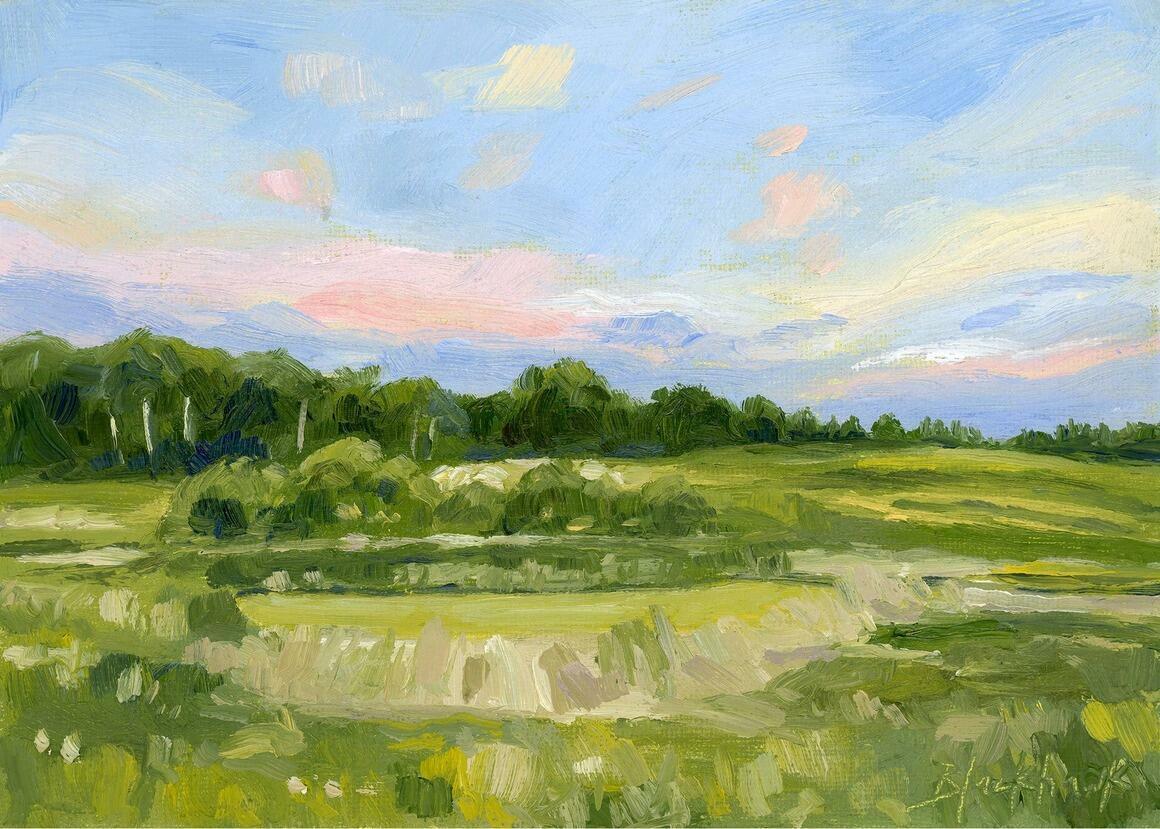 Pink Marsh Horizontal Canvas Print | Trada Marketplace