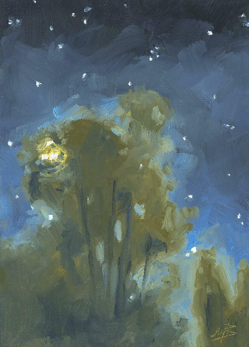 Summer Nocturne Vertical Canvas Print | Trada Marketplace