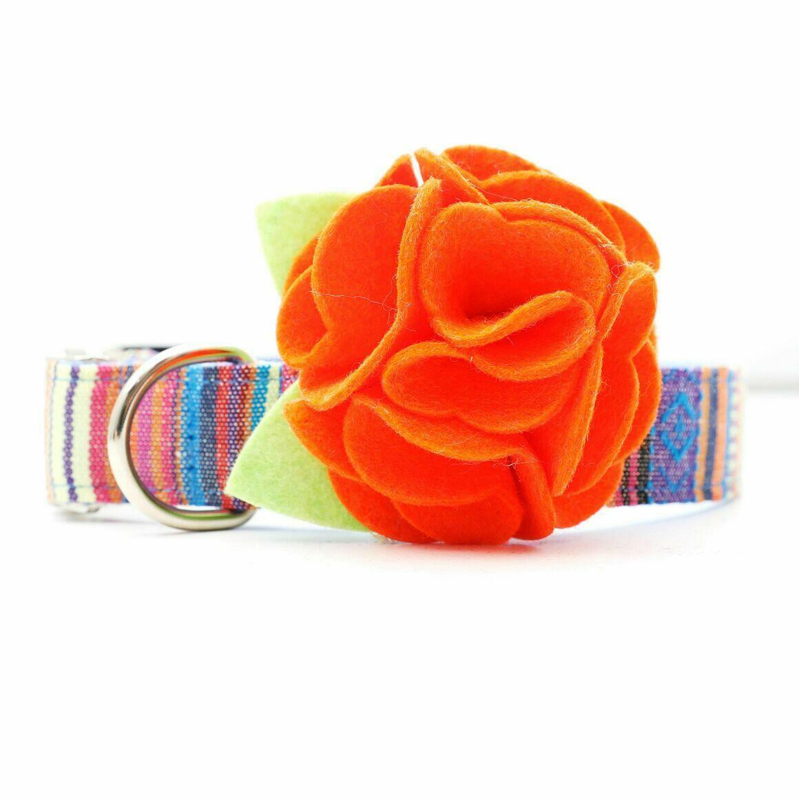 Dog Collar Hydrangea Flower - Hallow's Eve Orange   Trada Marketplace
