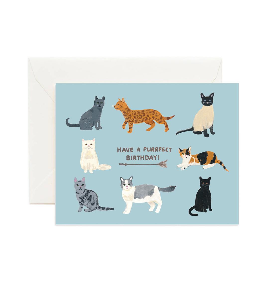 Birthday Cats (Box of 8)   Trada Marketplace