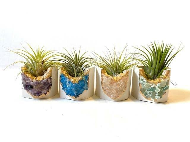 White Geode Planter wit Air Plant - Mixed Color   Trada Marketplace